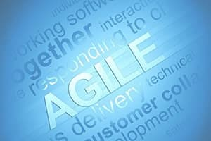 Agile Practitioner