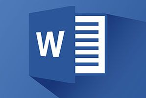 MS Word Adv